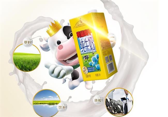 荷兰乳牛饮品加盟条件