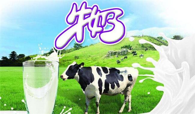 德瑞赛牛奶饮品品牌介绍