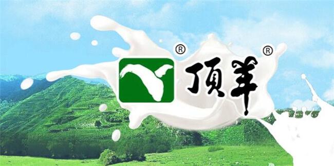 顶羊乳业品牌介绍图1
