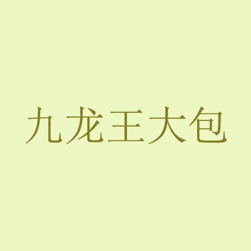 九龙王大包