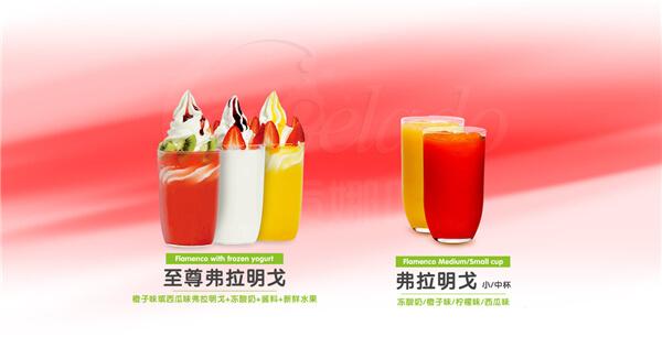 贡娜哆冰淇淋品牌介绍图2