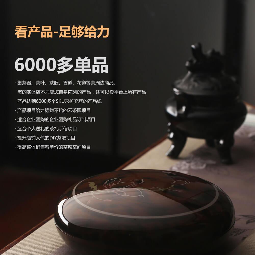 束氏茶道品牌介绍图5