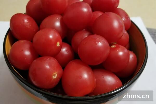 超详细的西红柿虾仁做法,简直不要太美味