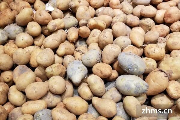 红烧肉炖土豆怎么做好吃