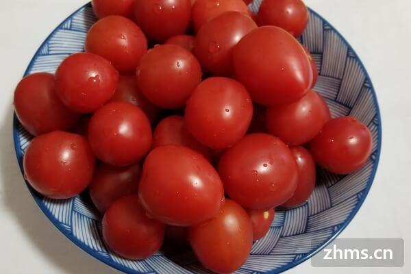 水果西红柿