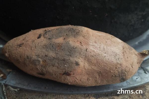 红薯怎样吃才好吃呢