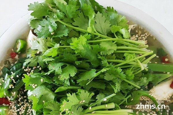 蔬菜及肉类各自的营养和功效