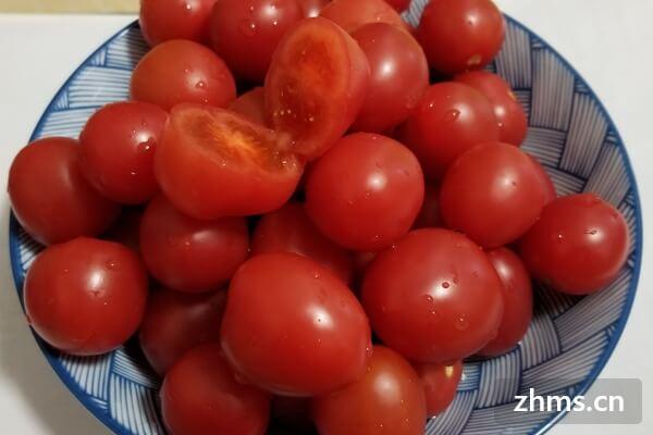 番茄炒鸡蛋怎么做好吃,吃番茄有什么好处