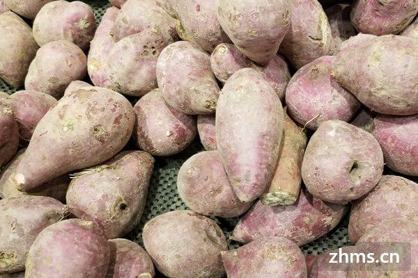 红薯怎样吃