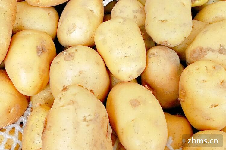 土豆烧肉的做法有哪些