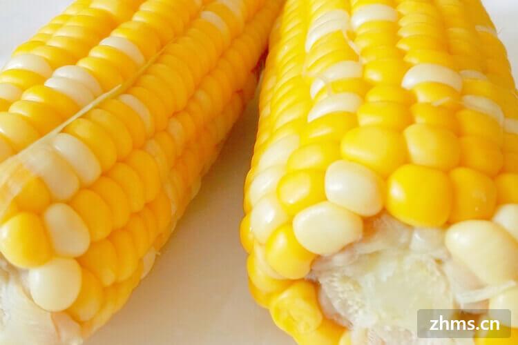 一根水煮玉米的热量