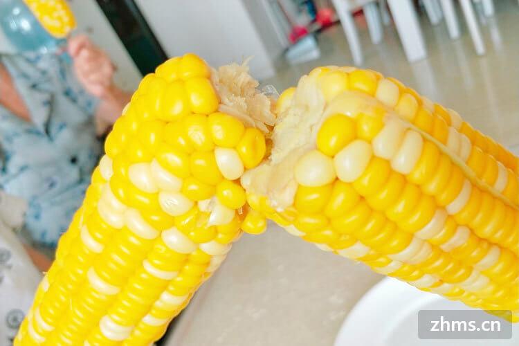玉米粉能做的美食原来有这么多,你知道多少
