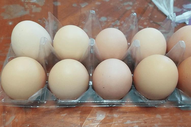没有喝过西红柿紫菜鸡蛋汤,请问西红柿紫菜鸡蛋汤好喝吗?