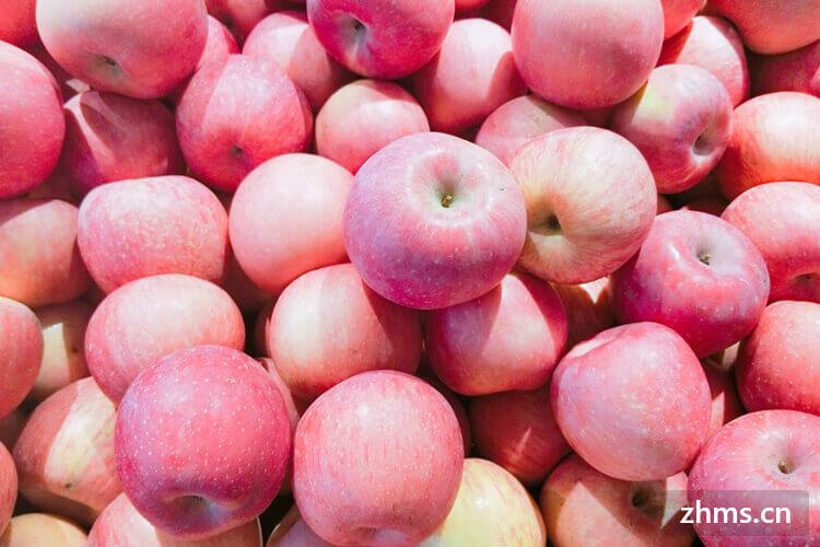现在才知道苹果的营养价值,必须要了解!