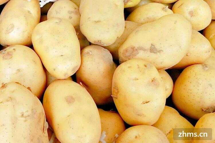 土豆湯的家常做法