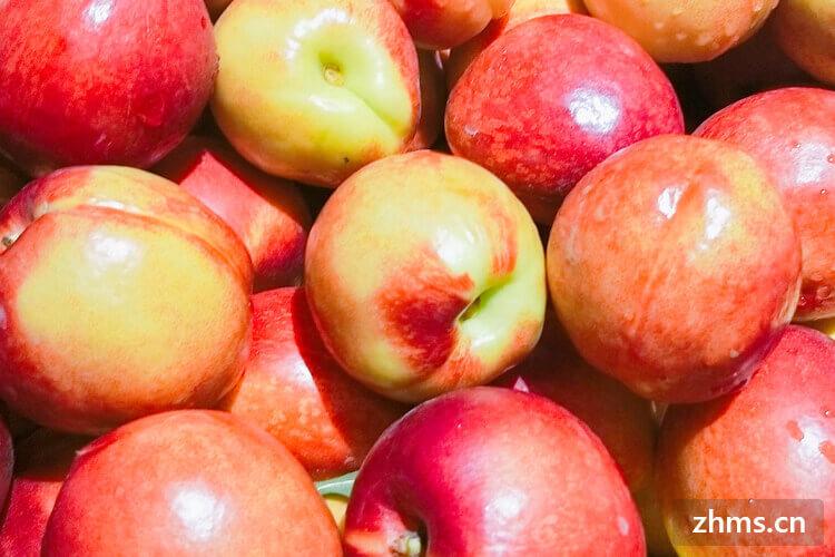 桃子的功效与作用,吃桃子有什么好处?