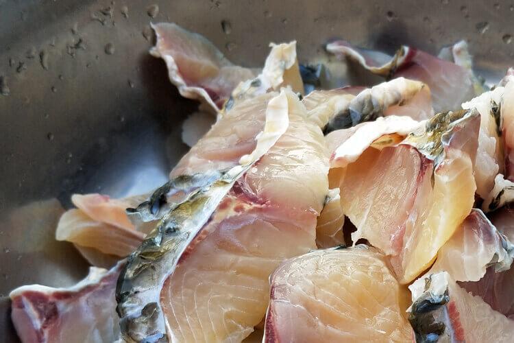 不太了解鱼类,鳗鱼是黄鳝鱼吗?