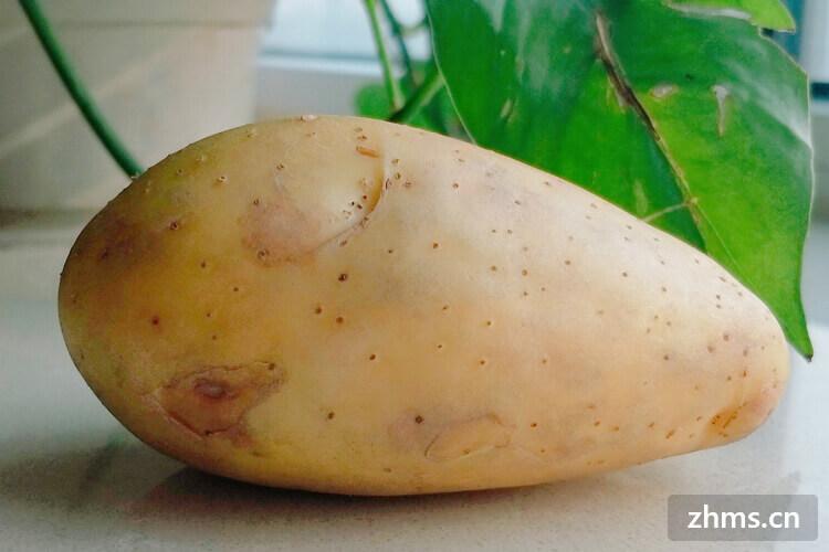 买了土豆,青色的土豆能吃吗?
