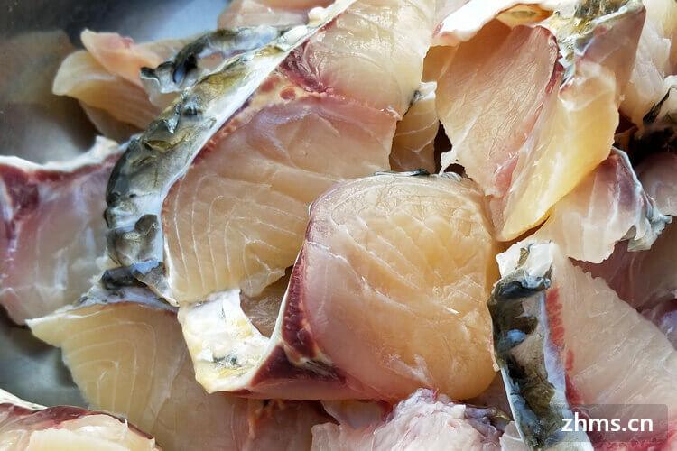 江浙黑鱼市场前景如何,江浙黑鱼批发价格合理吗?