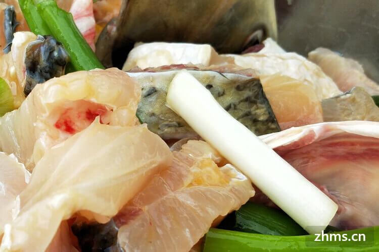 吃什么鱼对肝好,这些鱼类平价健康