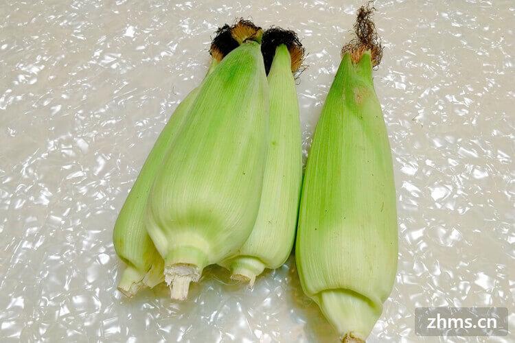 玉米怎么做,竟然现在才知道?!