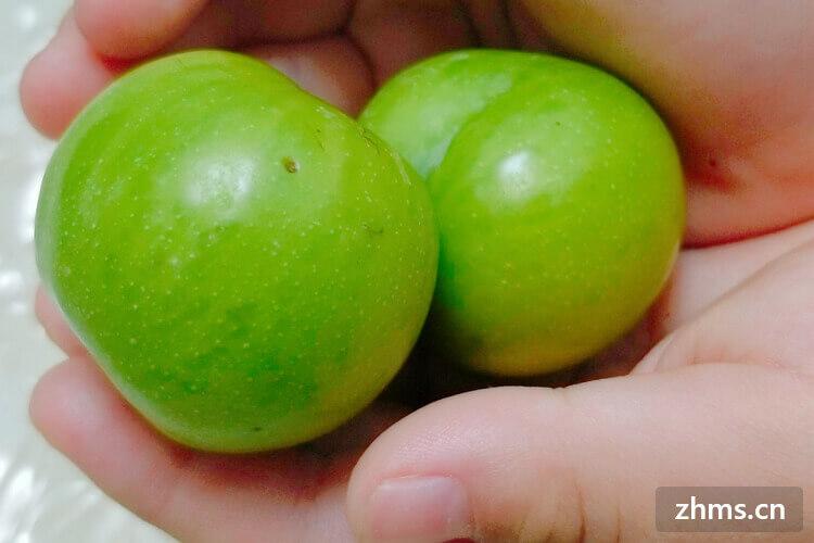 李子和枣子,两种完全不搭的果实,怎样结合在一起呢