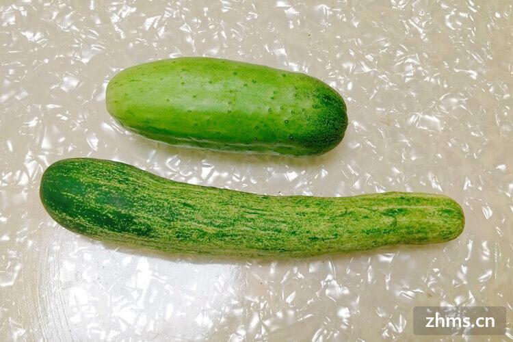 早上吃黄瓜可以减肥吗