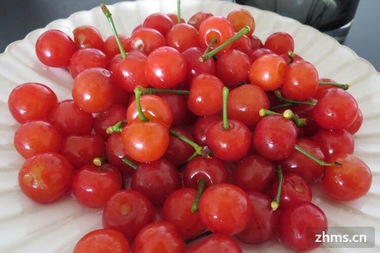 春分适合吃什么水果