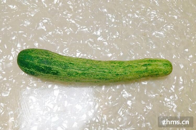 黄瓜怎么做好吃又简单,你知道吗?