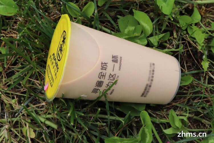 奶熊奶茶店加盟费多少