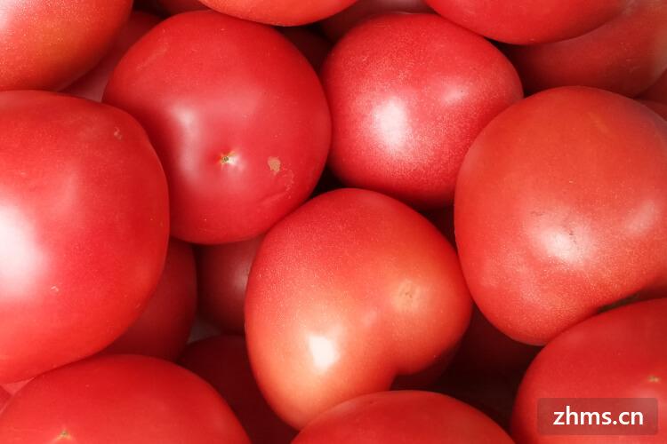 西红柿炒饭制作方法