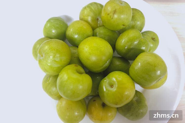 我想吃紫李子,紫李子阴历几月成熟?