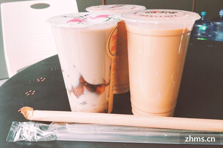奶熊奶茶加盟费多少钱