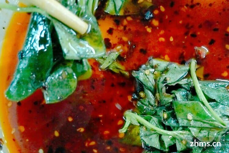 鱼腥草吃叶吗,功效有哪些