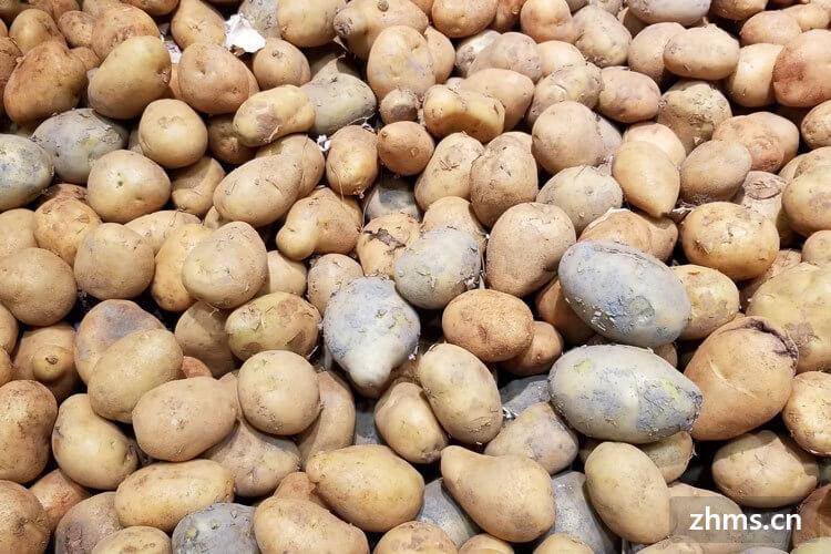 减肥能吃炒土豆丝吗