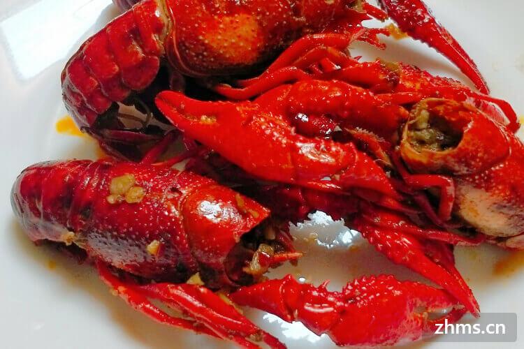 小龙虾真美味,那你知道小龙虾吃什么食物吗