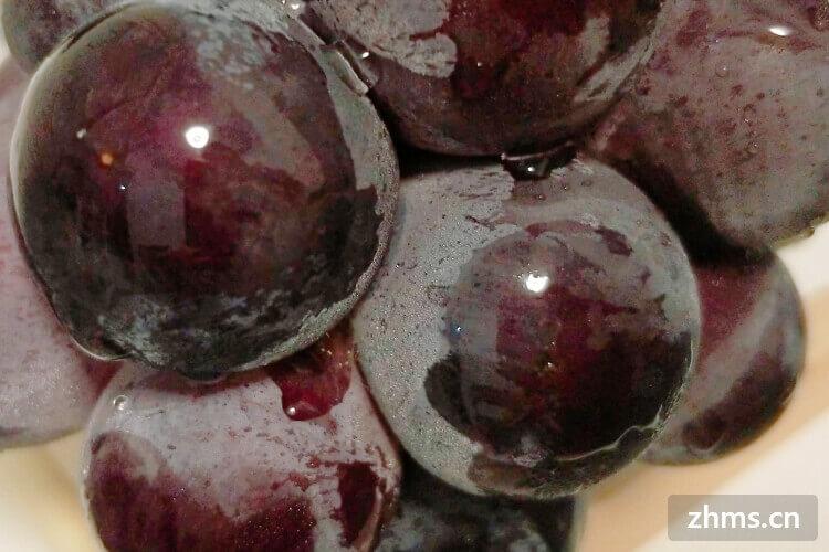 挑选葡萄时,怎样的葡萄好吃又美味?