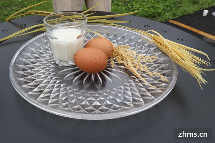 蛋清可以做什么
