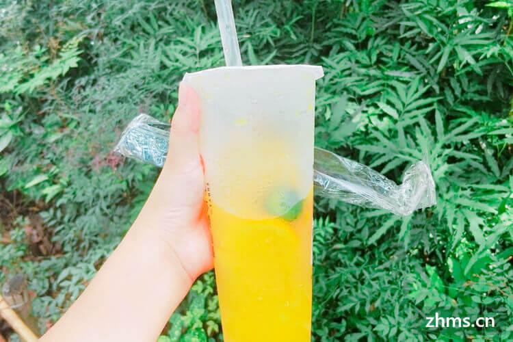 宝桑园桑果汁饮品相似图片1