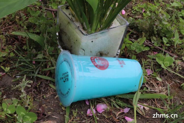 密果奶茶相似图片3