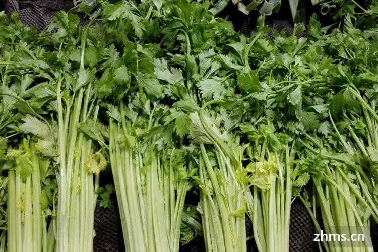 水芹和芹菜是一样的吗,怎么来区分它们