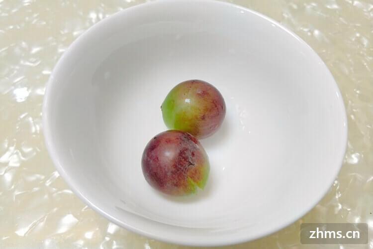 大棚葡萄种植技术如何种植