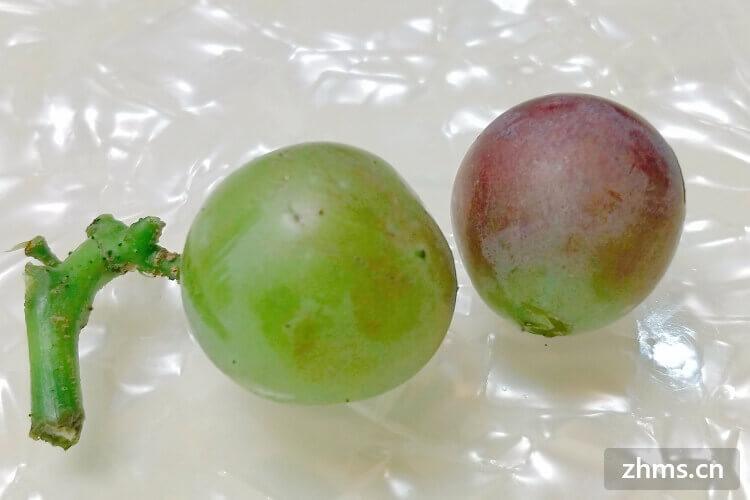 葡萄和桃子什么时候成熟