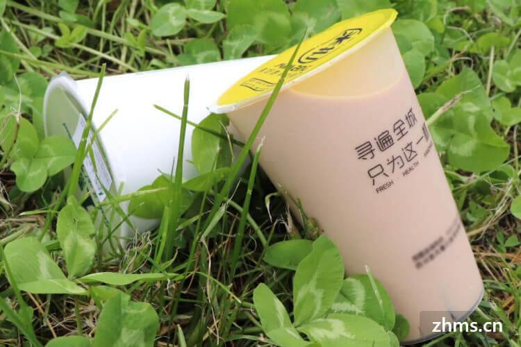凤山茶相似图片1