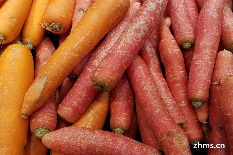 胡萝卜是生吃有营养还是熟吃营养价值高?这样吃胡萝卜更有营养