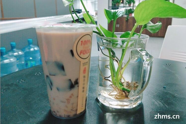 蓝语蓝茶饮品相似图片3