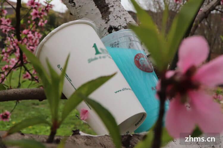 河北奶茶连锁加盟店