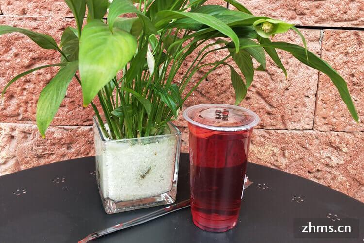 果逗茶饮品相似图片2