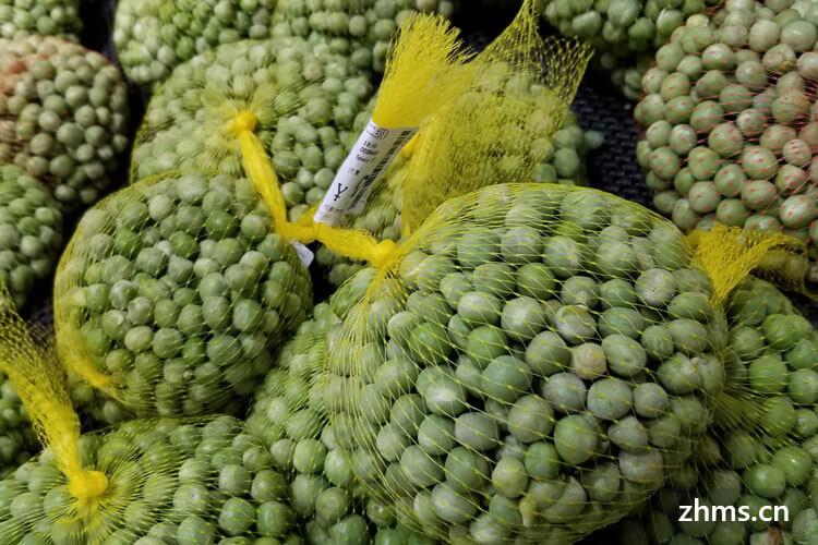豌豆苗怎么做好吃