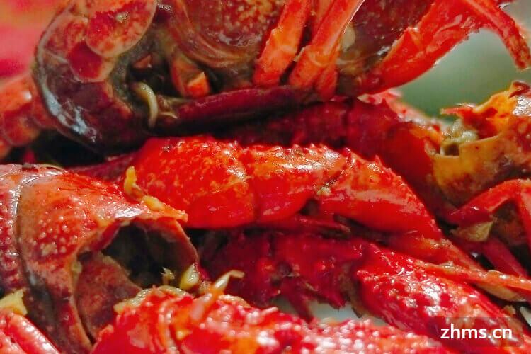 买了点儿龙虾和螃蟹,请问龙虾螃蟹蒸多长时间合适?